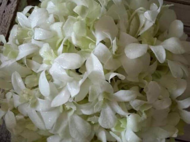 Wedding bouquets by wedding fowers phuket (109)